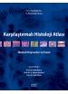 Karşılaştırmalı Histoloji Atlası Memeli Hayvanlar ve İnsan